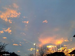 le ciel (archgionni) Tags: sky nuvole clouds tramonto sunset luce light oro gold azzurro blue lampione lamp alberi trees christiangroup