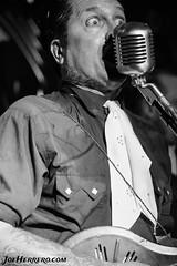 Speedbuggy USA (Joe Herrero) Tags: aprobado speedbuggy usa copernico cavern madrid concierto concert bolo gig live directo singer cantante guitar guitarra mandoline mandolina timbo joe herrero gretsch white falcon blanco y negro black