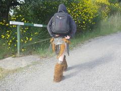 Shooting Skyrim - Ruines d'Allan -2017-06-03- P2090564 (styeb) Tags: shoot shooting skyrim allan ruine village drome montelimar 2017 juin 06 cosplay