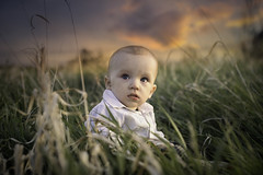 Moments to Remember (miss.interpretations) Tags: moments time priceless sunset goldenhour littleboy son child baby sweetmoments life lifestory stories tallgrass wisps blueeyes beauty cute children rachelbrokawphotography missintepretations castlerock colorado spring may 2017 fields columbineopenspace meadow green gold blue pink peach chubby