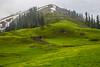 Makra Peak (mimalkera) Tags: kaghanvalley naran kaghan shogran siripaye payemeadows lakesaifulmalook travelpakistan travelbeautifulpakistan travel wanderlust