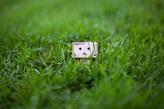 Danbo (Saxena, Anurag) Tags: canon outdoor grass green danbo toy miniature figurine nature