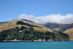 Crossing of Cook Strait (Lim SK) Tags: