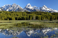 Tetons on a Gorgeous Morning (David C. McCormack) Tags: americana country eos eos6d western west tetons environment grandtetonnationalpark grandteton hiking inspiration jacksonhole jacksonwyoming landscape mountains nature nationalparks outdoor rockymountains rural wyoming