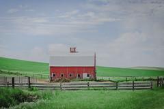 Red Barn (Pedalhead'71) Tags: whitmancounty washington red barn palouse