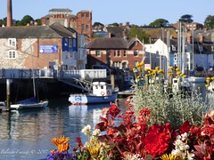 Weymouth (Belinda Fewings (3 million views. Thank You)) Tags: belindafewings panasoniclumixdmc bokeh city street seaside colour colourful artistic pbwa creativeartphotograhy creative arty beautiful beautify beauty lovely outdoors outside out best depthoffield garden color colours colors interesting interest water river june weymouth dorset estuary boats flowers floral resort sea harbour