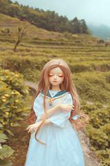 (兔兒草) Tags: bjd leekeworld xagadoll noella