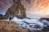 The Wave Whisperer (Rajesh Jyothiswaran) Tags: 1224mmf4 a7rii beach chrismoore exploringlightphotography ilce7rm2 landscape marcadamus ocean olympicnationalpark pacific seastacks seashore secondbeach sigmaart sky sunset washington water waves action dusk rocks sun wave