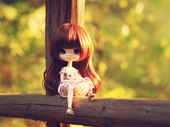 Spring Evening (Saga☆) Tags: yeolume full custom pullip groove aga obitsu21 obitsu 21 crobidoll crobi doll girl repaint faceup makeover mikiyochii mikiyo freckles brown dark auburn hair wig bangs eyes cute lovely pretty sweet young child baby kid toy asian saga sagelith rose rosie forest wood woods tree trees gold log fun play nature spring white flower dress