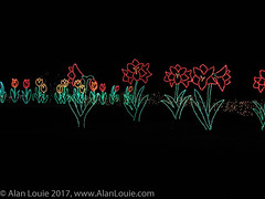 20031220 Bellingrath Xmas 0041 flowers.jpg (Alan Louie - www.alanlouie.com) Tags: bellingrath christmas alabama theodore unitedstates us