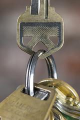 Mouth ring -[ HMM ]- (Carbon Arc) Tags: macromondays pareidolia face object key lock ring security deadbolt door padlock