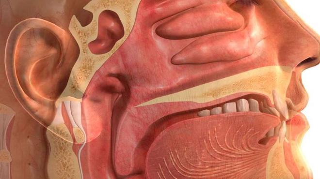 Đừng lo lắng! Ung thư vòm họng mà Kim Woo Bin mắc rất nguy hiểm, nhưng tỉ lệ sống lên đến 80% - Ảnh 2.