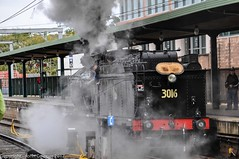 Transport Heritage Expo 2017 - -5 (john cowper) Tags: transportheritagensw centralrailwaystation transportheritageexpo heritagediesels nswrailmuseum 3642 3041 4001 mortuarystation entertainment queensbirthdayweekend sydney newsouthwales