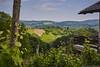 IMG_7505 (Boobo_oobo) Tags: canon 6d vinski vrh zagorje vine tasting bbq hangout holliday viksa vikendica klet trsje vinograd vino
