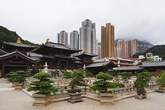 DSC09503 (Hendraxu) Tags: city architecture temple chi lin nunnery hong kong hongkong chilin asia traditional culture buddhism buddhist faith belief garden diamondhill diamond hill
