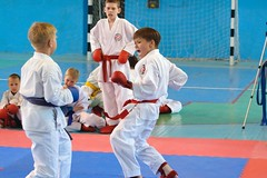 "pervenstvo-asbestovskogo-gorodskogo-okruga-po-karate-2017-5 • <a style=""font-size:0.8em;"" href=""http://www.flickr.com/photos/146591305@N08/34872048391/"" target=""_blank"">View on Flickr</a>"