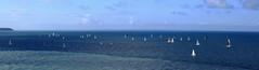 La Course  /  The Race (Loïc Gouyette) Tags: voile sail boat bateau sea mer course voilier normandie