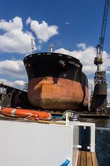 Cape Maria (Leif Hinrichsen) Tags: deutschland hamburg reise schiff städtetrip luxusjacht trockendock werft dock blohmundvoss frachtschiff capemaria