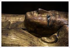 Senza titolo 110 (Outlaw Pete 65) Tags: sarcofago sarcophagus viso face faraone pharaoh oro gold colori colours museo museum nikond600 nikkor24120mm torino piemonte italia