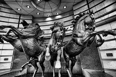 The Four Bronze Horses of Helios (MKHardyPhotography) Tags: london blackandwhite mkhardy streetphotography distagont3518