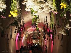 underground-tunnel-floraart_31