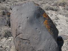 Petroglyph at Grimes Pt petroglyph area in Nevada-03 6-29-13 (lamsongf) Tags: rockart petroglyph nativeamerican americanindian nevada grimespoint
