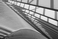 Liège Guillemins 2 (ohank1951) Tags: shadows abstract bw blackandwhite monochrome architecture steel concrete glass lines curves gare station bahnhof calatrava luikguillemins luik lüttich liègeguillemins belgië labelgique belgium canoneos1100d efs1022mmf3545usm