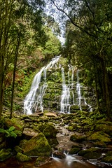 Waterfall // TASMANIA (Max Ryszawa) Tags: tasmania waterfall water nature beauty