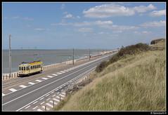TTO 9942 - Domein Raversijde (Spoorpunt.nl) Tags: visweekend westende toeristische tram des tijds tto noordzee standaard motorwagen 9942 10 juni 2017 domein raversijde strand zee