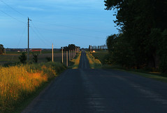 Low Light and Lonesome Roads (view2share) Tags: 150thst stcroixcounty wisconsin wi westernwisconsin weather rural country sunset sundown sun evening deansauvola june162017 june2017 june 2017 light lighting goldenlight goldlight road roadtrip sectionroad farmroad trees shadow clouds sky intrastructure