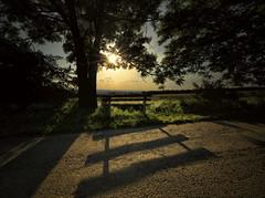 bench (tobias-eger) Tags: bench landscape shadows sunset sun horizon blackforest kontrast landschaft bank sonnenuntergang