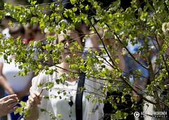 """adam zyworonek fotografia lubuskie zagan zielona gora • <a style=""""font-size:0.8em;"""" href=""""http://www.flickr.com/photos/146179823@N02/35285428146/"""" target=""""_blank"""">View on Flickr</a>"""