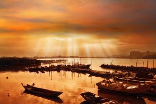 ~ The light of life | 生命之光 ~