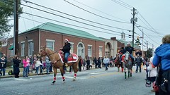 Horses 14 (Annirose) Tags: christmas2016 christmas conyersga conyerschristmasparade2016 winter2016