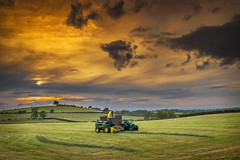 Silaging under a red sky (Alan10eden) Tags: silage harvester johndeere selfpropelled chopping grass lifting tractor trailer evening sunset redsky landscape ensile crop feild ryegrass farm farmer agriculture livestock farming ulster armagh county markethill northern ireland alanhopps canon 80d sigma 1770mm summer firstcut contractor