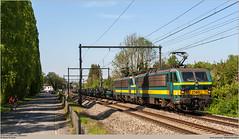 LINEAS 2146 + 2134 @ Céroux-Mousty (Wouter De Haeck) Tags: belgië belgique belgien infrabel l140 ottignies marcinelle charleroi waalsbrabant brabantwallon cérouxmousty louvainlaneuve ottignieslouvainlaneuve nmbs sncb lineas hle21 bn labrugeoiseetnivelles acec cargo coils brammen genk genkzuid châtelet
