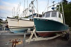 Commercial Fishing Boats - Nikon D750 - Nikkor 18mm f/3.5 AI-s (divewizard) Tags: chrisgrossman nikond750 nikon d750 dslr fx nikkor18mmf35ais nikkor 18mm f35 ais primelens manualfocus 18mmf35ais arenacove mendocinocounty california pointarena northcoast coast coastal ocean pacific cove pier wharf seashore shore boat boats fishing commercial fishingboats commercialfishingboats workingboats boatontrailer boatsontrailers