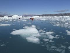 Sea kayaking - Eqi fjord (Jersey Sea Kayaking) Tags: ice greenland icebergs disko bay eqi sea kayaking