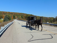 Amish Traffic (georgeneat) Tags: amish horse carriage buggy meyersdale somerset county pa pennsylvania george neat patriot portraits scenic landscapes