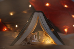 Bedtime Stories (Felicia Brenning) Tags: bedtime stories book tent camping fairy lights lantern miniature photography miniaturephotography miniscene fantasy fantasyphotography creativephotography creative fairytale fairytalephotography fairylights photoshop photomanipulation manipulation surreal surrealism surrealphotography photoart photographyart mini magical world myworld me myself selfie selfportrait artsy photo art model fun imagination tiny colors colours orange colorful scandinavia sweden sony dream dreamy
