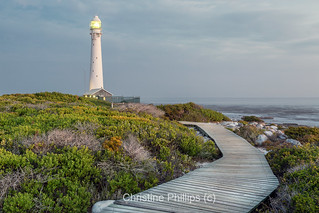 Slangkop Lighthouse, Kommetjie Cape Town South African (Christine Phillips)