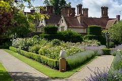 Jay Robins's Rose Garden, Borde Hill (hehaden) Tags: garden borders roses path sculpture house mansion bordehill sussex summer fountain