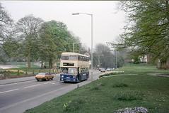 WMT 6436, Tettenhall, Wolverhampton, 1987 (Lady Wulfrun) Tags: wmt 6436 noc437r wolverhampton tettenhall paddlingpool tettenhallroad fleetline morrismarina coupe tettenhallgreen 501e 501