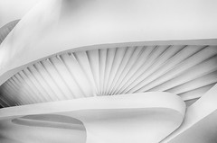 """Arcs & Strokes"" (Photography by Sharon Farrell) Tags: stairs staircases staircase stairscape stairporn spiralstaircase spiralstaircases steps stepsandstairs spiral abstract abstractarchitecture abstractphotography abstracts spiralabstract blackandwhite blackwhite blackandwhiteabstract blackwhiteabstract noiretblanc monochrome architecture newyorkarchitecture armani giorgioarmani armanistaircase giorgioarmaniboutique 717fifthavenue 7175thavenue fifthavenue newyork newyorknewyork newyorkcity manhattan manhattannewyork"