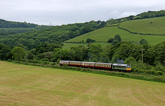 D7612 - South Devon railway (Andrew Edkins) Tags: class25 d7612 rat brgreen railwayphotography uk england southdevonrailway trip travel diesel sulzer buckfastleigh light canon preservedrailway landscape clag geotagged summer 2017 may afternoon 1960s hills overcast heritage vintage locomotive type1 trees field holiday