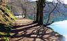 Auverniae. Lac Pavin. p41017 (712) (joseluisgildela) Tags: auvernia lacpavin lagos esenciadelanaturaleza árboles