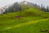 IMG_9518 (mimalkera) Tags: kaghanvalley naran kaghan shogran siripaye payemeadows lakesaifulmalook travelpakistan travelbeautifulpakistan travel wanderlust