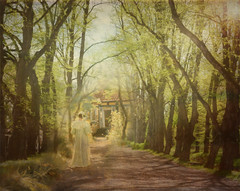 Lady in the park (Birgitta Sjostedt) Tags: way tree avenue row old winding leaf our castle park castlepark nature landscape outside creation texture paint lady scene serene beauty fantasy magicunicornverybest ie
