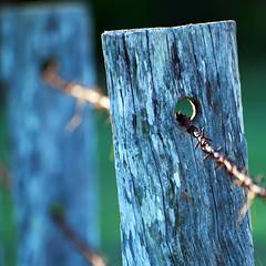 drillled (Leonard J Matthews) Tags: hole fence post drilled wire barbed australia mythoto