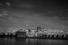 Bathing in the Vltava Sun (D.I. Hammonds) Tags: vltava prague river castle czech republic east eastern europe european city cities urban cityscape ir infra red infrared sky skycap water capital canon eos 1200d adobe photoshop google nik collection